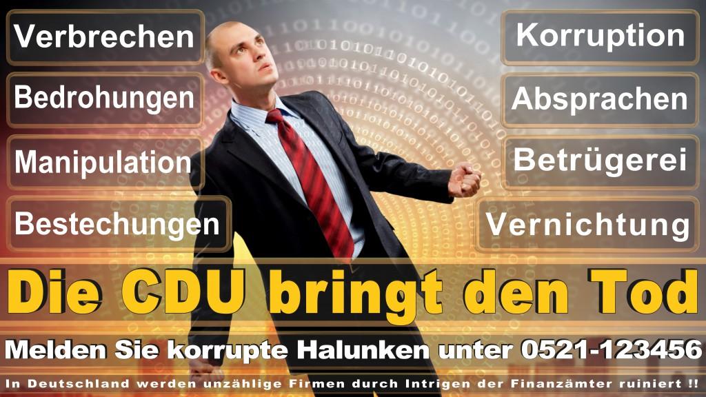 Landtagswahl Schleswig Holstein CDU SPD FDP AfD NPD Wahlplakate Umfrage Prognose Stimmzettel Angela Merkel